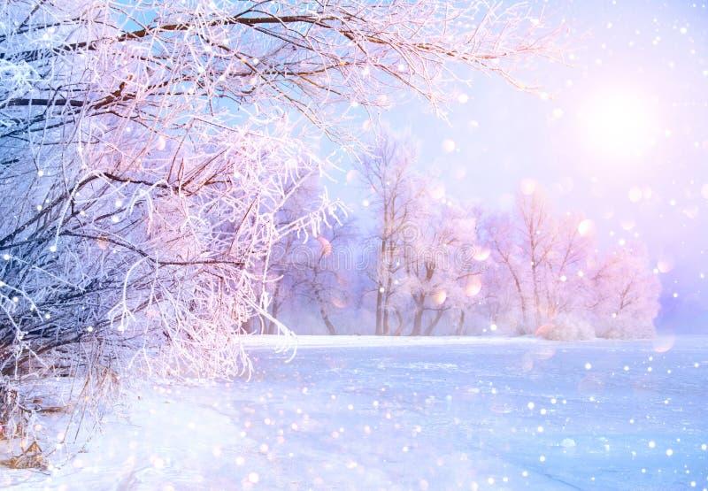 Schöne Winterlandschaftsszene mit Eisfluß stockbild