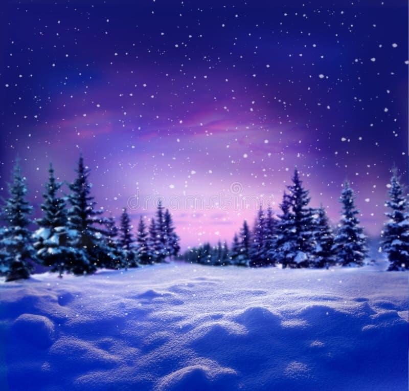 Schöne Winternachtlandschaft mit Schnee bedeckten Bäumen christ stockfoto