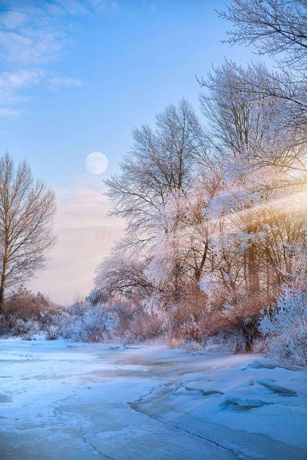 Schöne Winternaturansicht; Winterlandschaft auf einem Hoar Frost stockbild