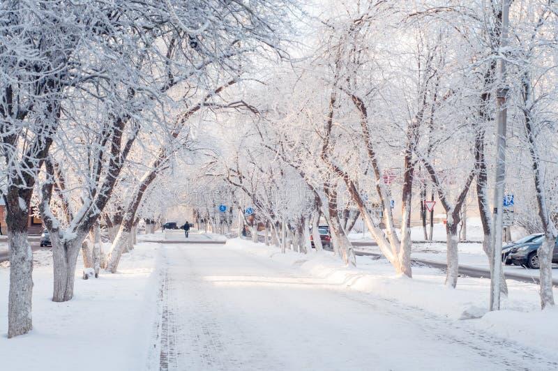Schöne Winterstadtgasse an einem sonnigen Tag, Bäume im Schnee lizenzfreies stockfoto