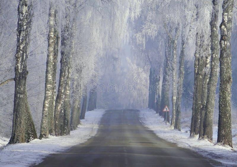 Schöne Winterstraße Litauen-Landschaft stockfoto