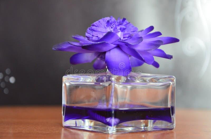 Schöne wohlriechende Blume stockbild