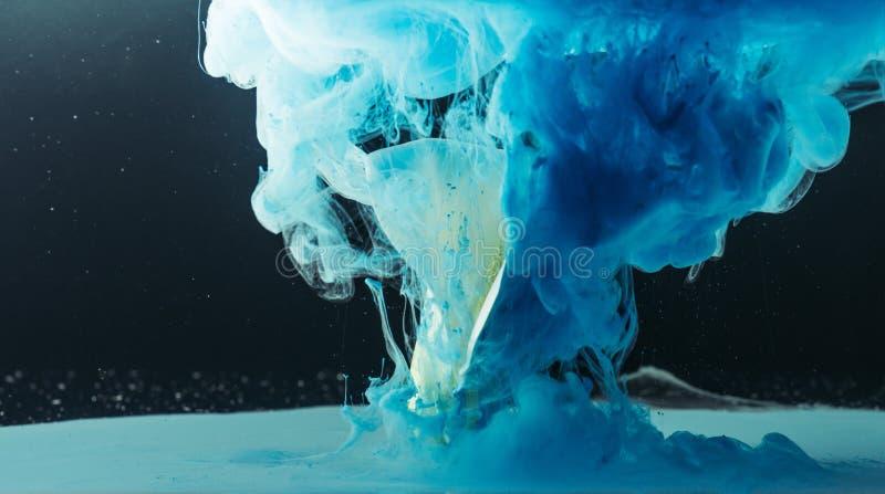 schöne zarte weiße Callalilienblume und blaue Tinte lizenzfreie stockbilder