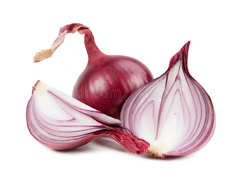 Schöne Zwiebel lokalisiert auf weißem Hintergrund stockbild