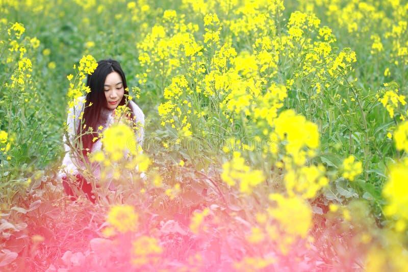 Am schönen Vorfrühling archivierte ein Stand der jungen Frau mitten in gelben Vergewaltigungsblumen, der in Shanghai das größte i stockbilder