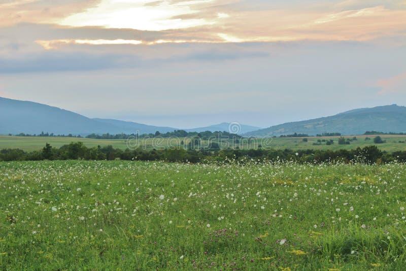 Schöner Abendhimmel über Dreznik-Absolventen in Kroatien lizenzfreies stockbild
