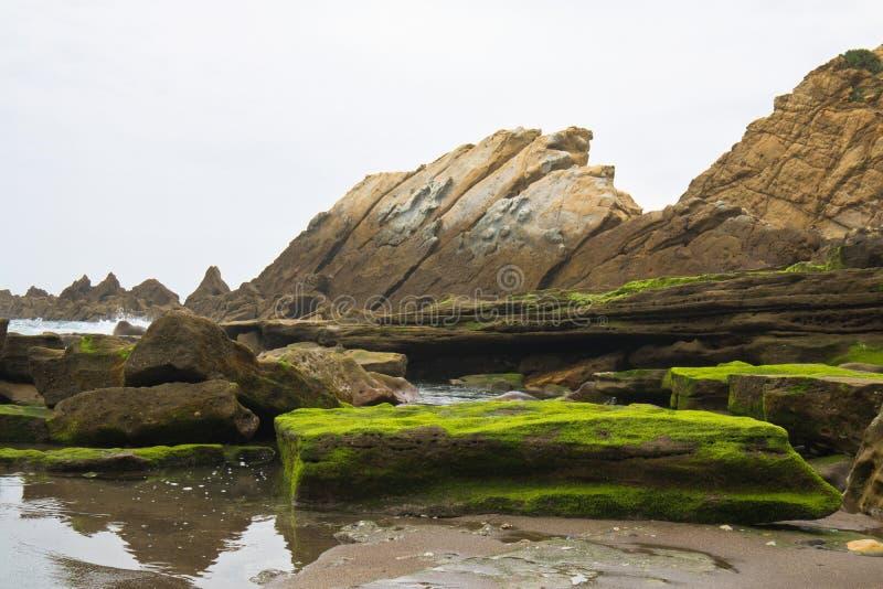 Schöner Abschluss oben auf Felsen auf sandigem vulkanischem azkorri Strand nahe Bilbao auf spanischer atlantischer Küste im baski lizenzfreie stockfotos