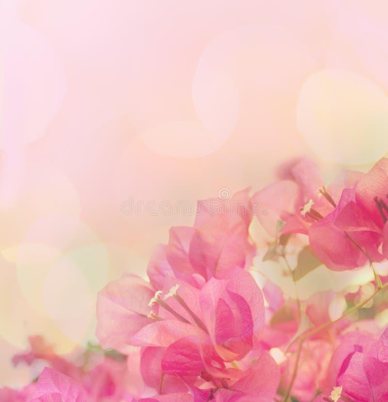 Schöner abstrakter Blumenhintergrund stockfoto