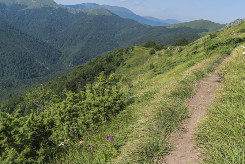 Schöner Bergblick von den Eingängen auf dem Weg zur Eho-Hütte Das Troyan Balkan ist außergewöhnlich malerisch und bietet a an lizenzfreies stockfoto