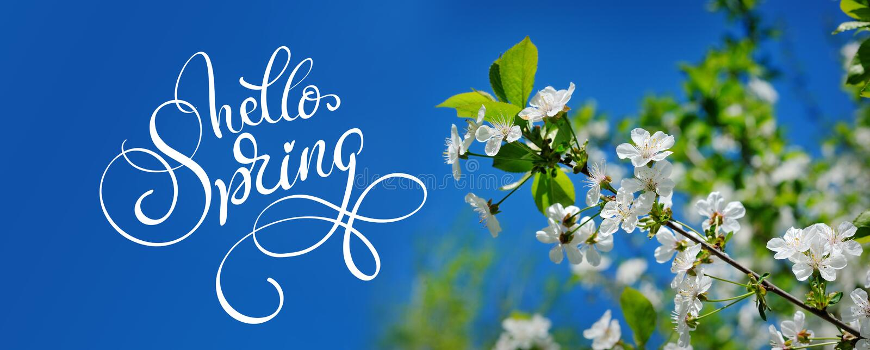 Schöner blühender Frühlingsgarten auf einem Hintergrund von blauer Himmel und Text hallo Frühling Kalligraphiebeschriftung stockfotos