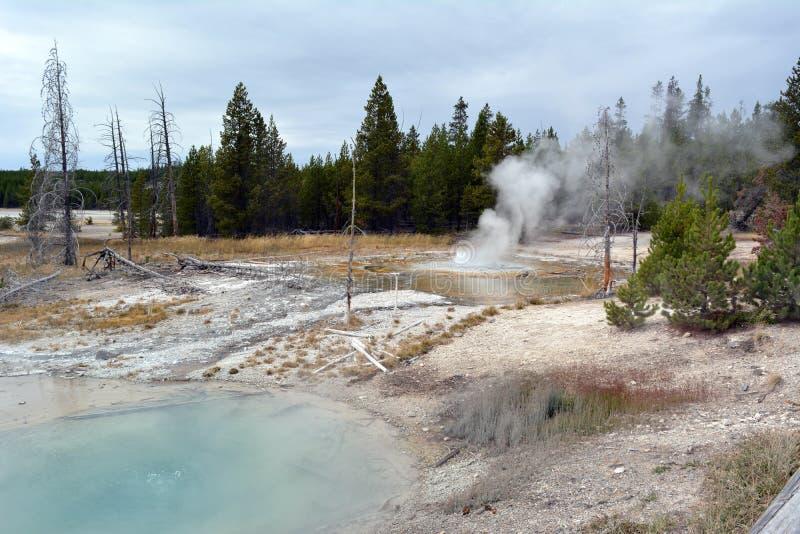 Schöner blauer Geysir in Norris Geyser Basin im Park Yellowstone lizenzfreies stockbild
