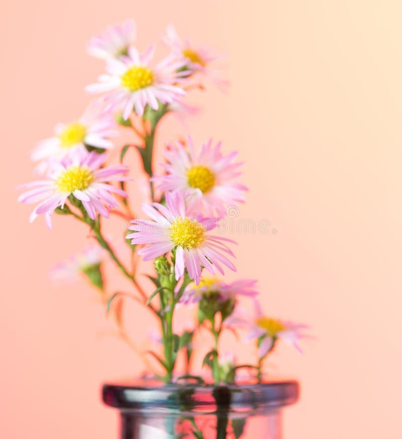 Schöner Blumenhintergrund stockbild