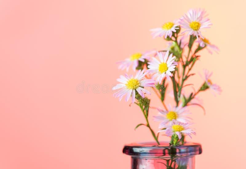Schöner Blumenhintergrund lizenzfreie stockbilder