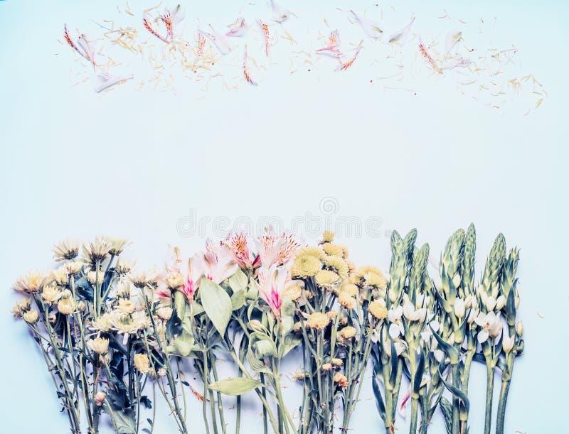 Schöner Blumenhintergrund auf blauer, Pastelldraufsicht Blumenplan lizenzfreies stockfoto