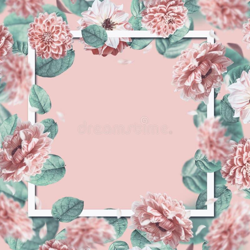 Schöner Blumenrahmen mit dem Fallen oder dem Fliegen von rosa Blumen und von Blättern am Pastellhintergrund lizenzfreies stockbild
