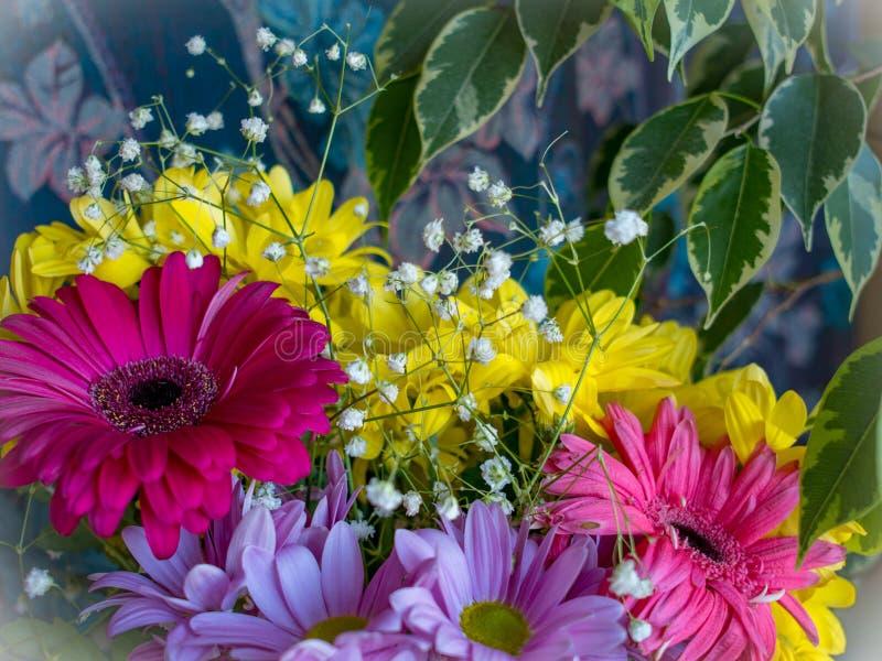 Schöner Blumenstrauß des purpurroten gerber und der gelben Blumen lizenzfreie stockfotografie