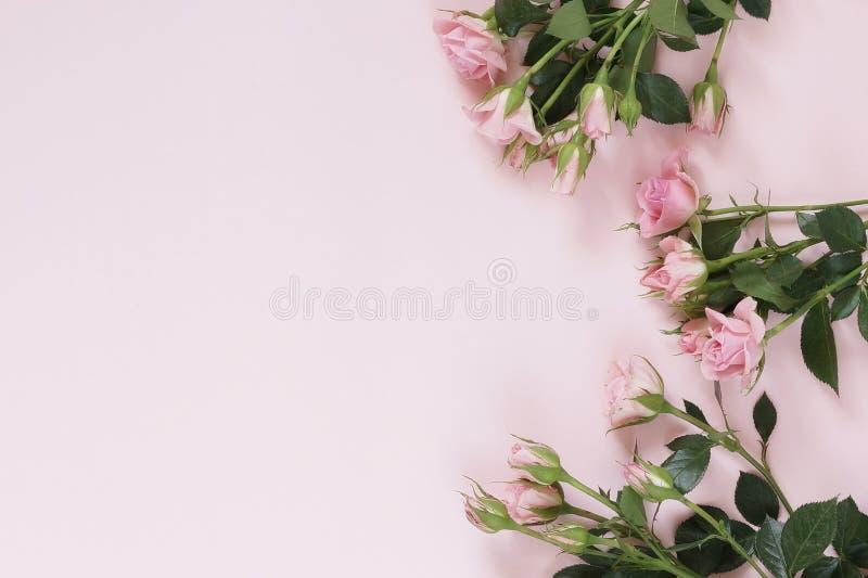 Schöner Blumenstrauß von leicht rosa Rosen stockfotos