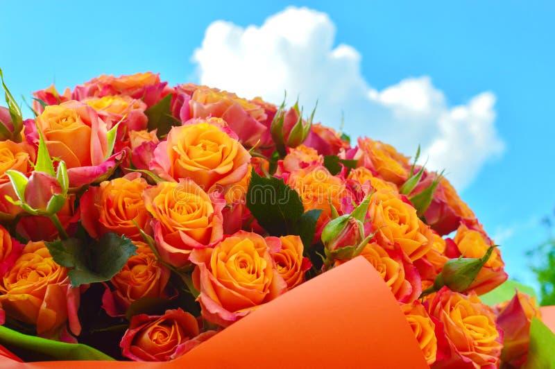 Schöner Blumenstrauß von Rosenbusch stockfotos