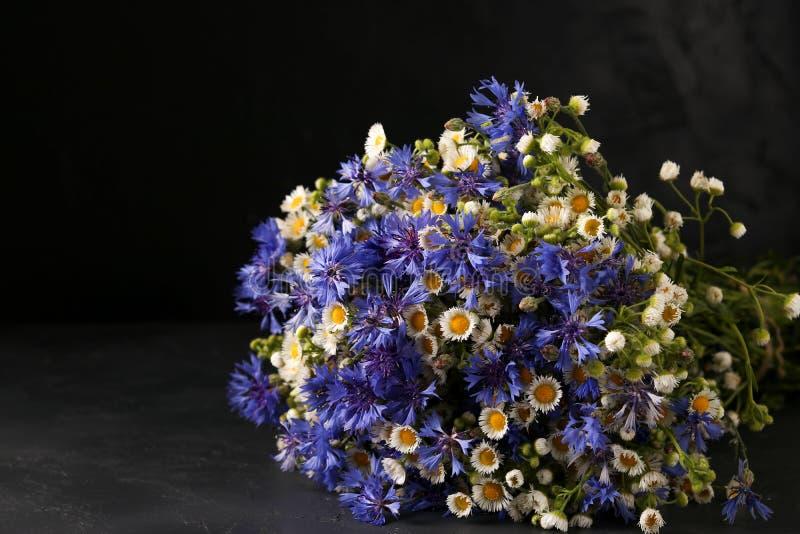 Schöner Blumenstrauß von wilden Blumen: voloshki und Kamille auf einem dunklen Hintergrund lizenzfreie stockbilder
