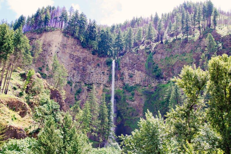 Schöner breiter Schuss eines dünnen hohen Wasserfalls auf hohen Klippen in einem Wald umgeben durch Grün lizenzfreie stockfotografie