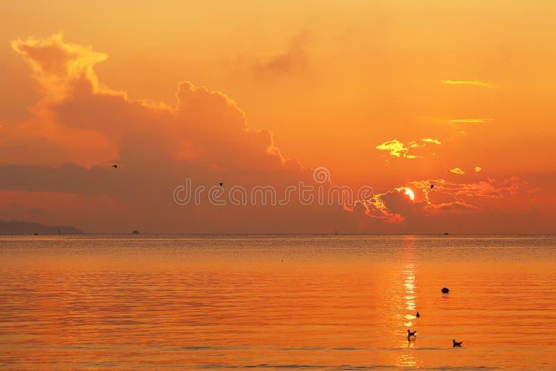 Schöner brennender roter Sonnenaufgang über dem Meer und den Wolken stockfoto