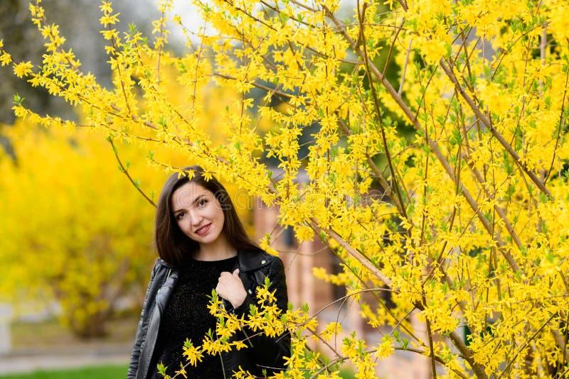 Schöner Brunette nahe dem gelben Laub Nette sch?ne L?chelnfrau, die in gelben Herbstpark geht Das Mädchen herein nahe dem Baum stockbild