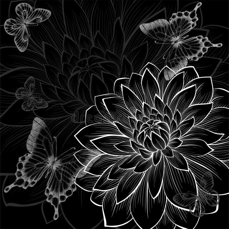Schöner einfarbiger Schwarzweiss-Hintergrund mit Dahlien und Schmetterlingen vektor abbildung