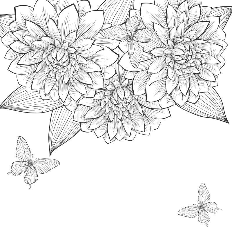 Schöner einfarbiger Schwarzweiss-Hintergrund mit Rahmen von Dahlienblumen und -schmetterlingen vektor abbildung