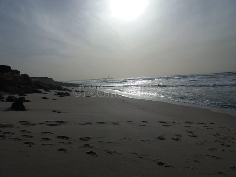 Schöner exotischer Strand stockbilder