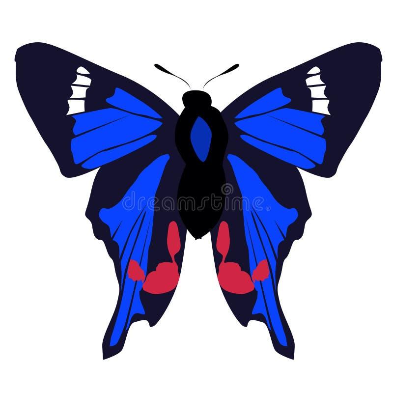 Schöner farbiger blauer Schmetterling der Ikone auf einem weißen Hintergrund Vec stock abbildung