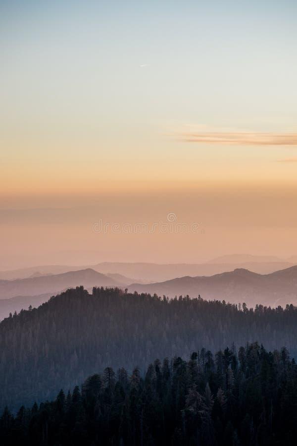 Schöner Forest Mountain Ranges lizenzfreies stockfoto