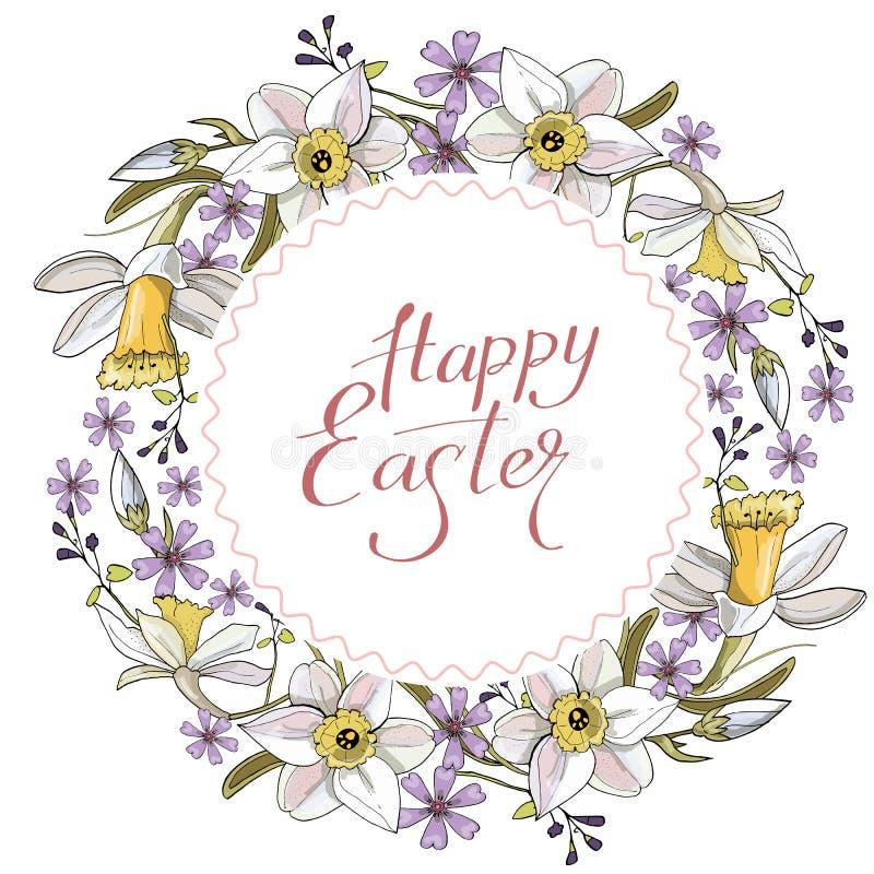 Schöner Frühlingskranz von Narzissen und von purpurroten Blumen auf einem weißen Hintergrund vektor abbildung