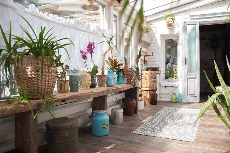 Schöner Garten mit vielen Blumen in den Töpfen Raum für Privatleben und Sport, selbstständige Entwicklung lizenzfreie stockfotografie