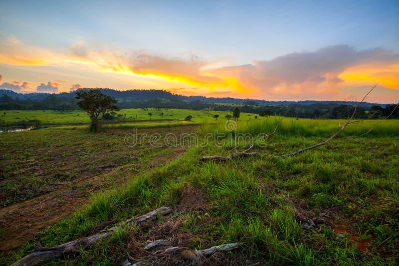 Schöner Gebirgslandschaftssonnenuntergang an Staatsangehörigem Thung Salang Luang lizenzfreie stockfotos