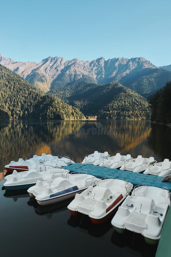 Schöner Gebirgssee mit grüner Kiefer Forest Hills am Ufer Ritsa See, Abchasien stockfoto