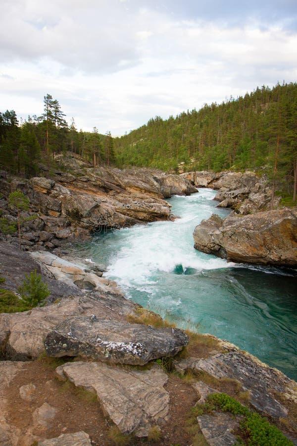Schöner Gebirgsstrom mit klarem Wasser in Norwegen nahe Besseggen stockbild