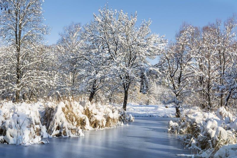 Schöner gefrorener See in Sofia, Bulgarien lizenzfreies stockbild