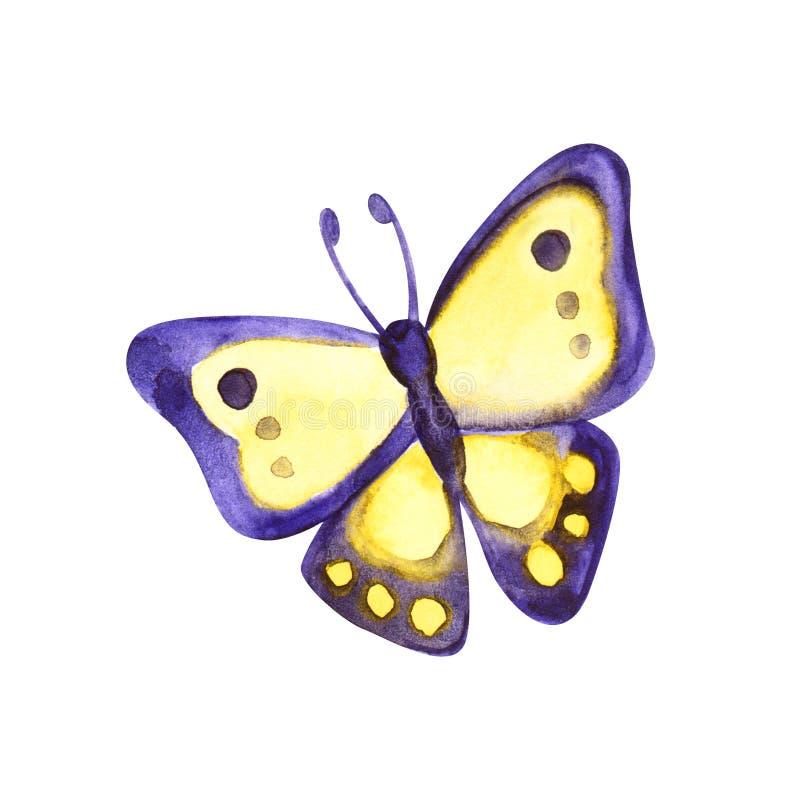 Schöner gelber violetter Schmetterling, Aquarell, lokalisiert auf einem Weiß stockbilder