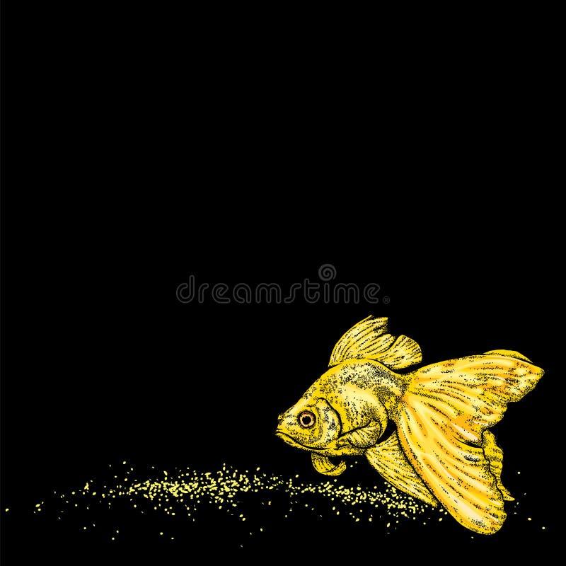 Schöner Goldfish Auch im corel abgehobenen Betrag Veiltail gezeichnet in Weinleseart lizenzfreie abbildung
