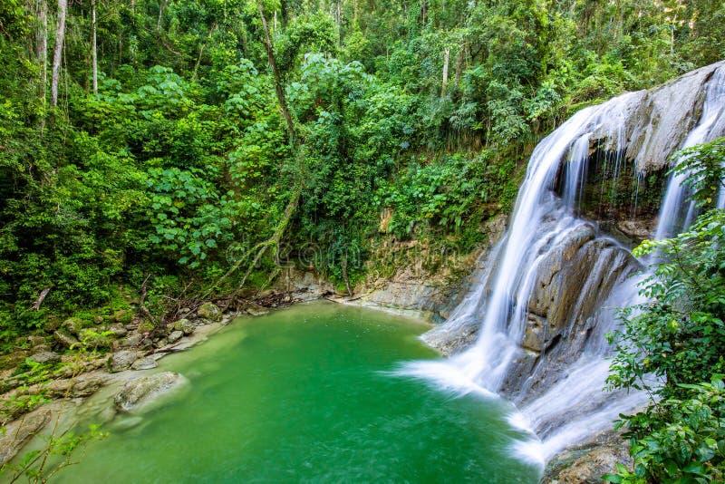 Schöner Gozalandia-Wasserfall in San Sebastian Puerto Rico lizenzfreies stockfoto