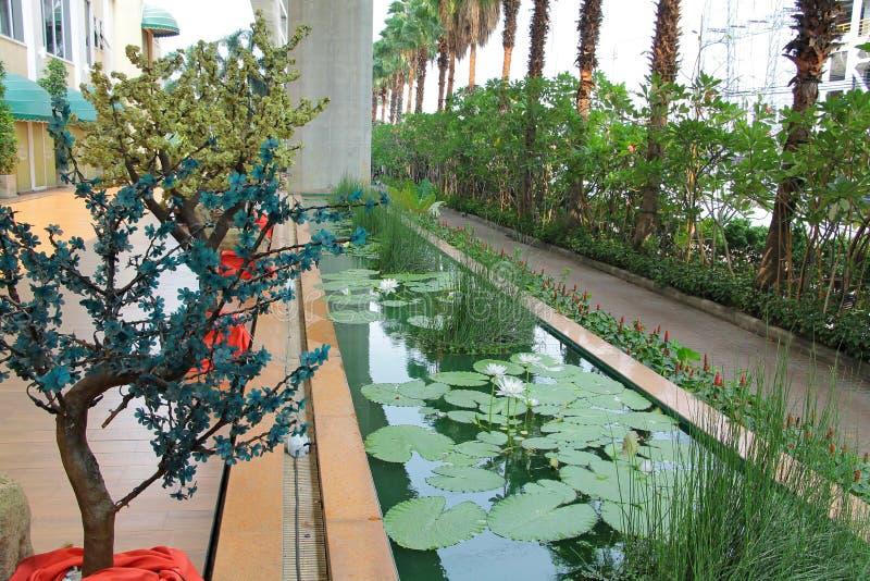 Schöner grüner Garten stockfoto