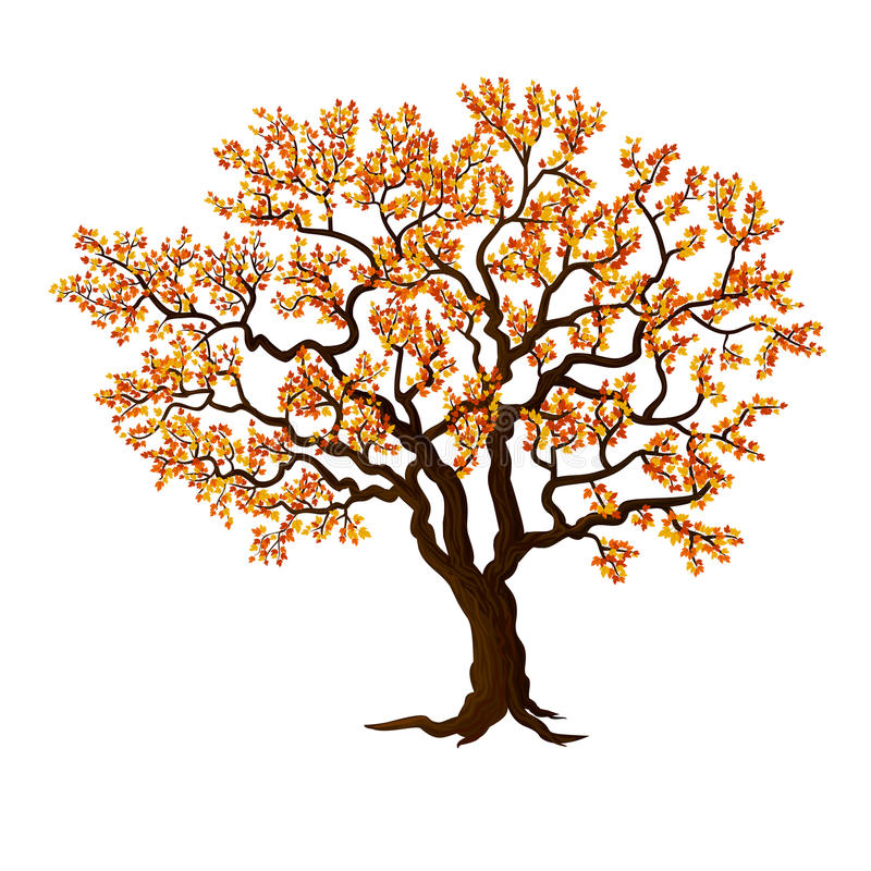 Schöner Herbstbaum stock abbildung
