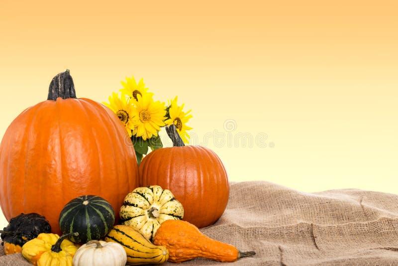 Schöner Herbsthintergrund lizenzfreies stockbild
