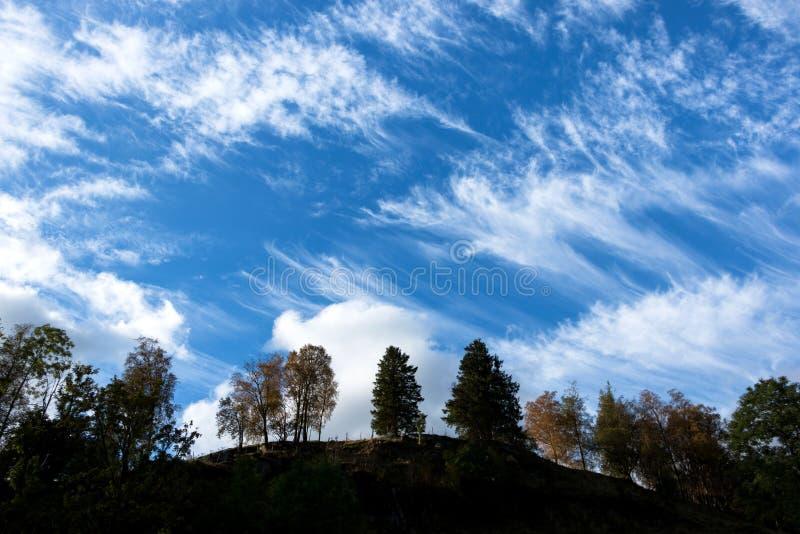Schöner Himmel über Bauernhof-Bäumen im Herbst stockfoto