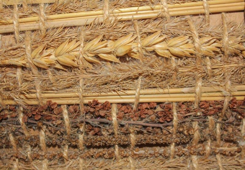 Schöner Hintergrund von getrockneten Kräutern Verschiedene trockene Getreide und h stockfotografie