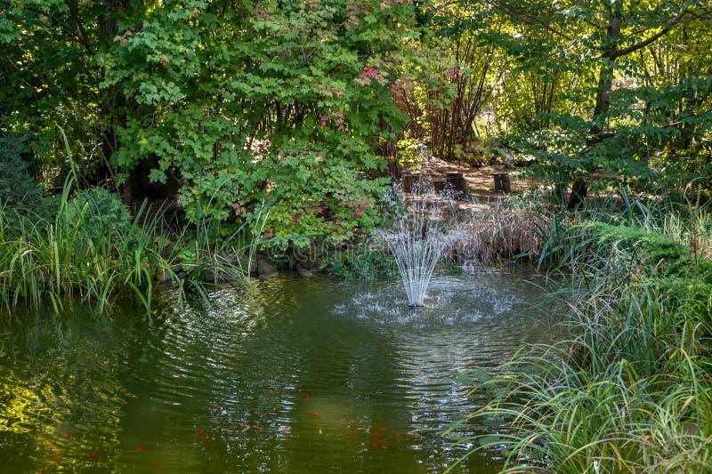 Schöner hoher Brunnen im Gartenteich Idyllisches Bild des grünen Wassers, der roten Fische und der schönen Anlagen um Teich lizenzfreie stockfotografie