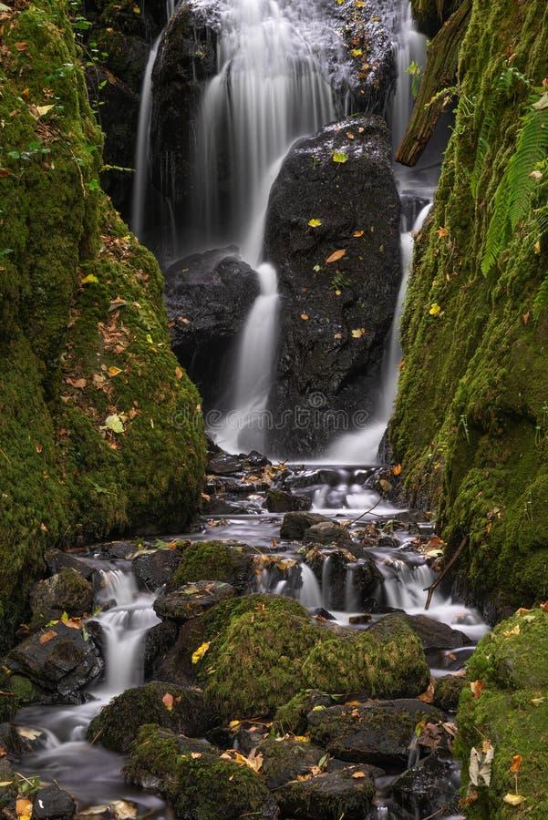 Schöner hoher Wasserfall, der über üppige grüne Landschaftfolia fließt lizenzfreie stockfotografie