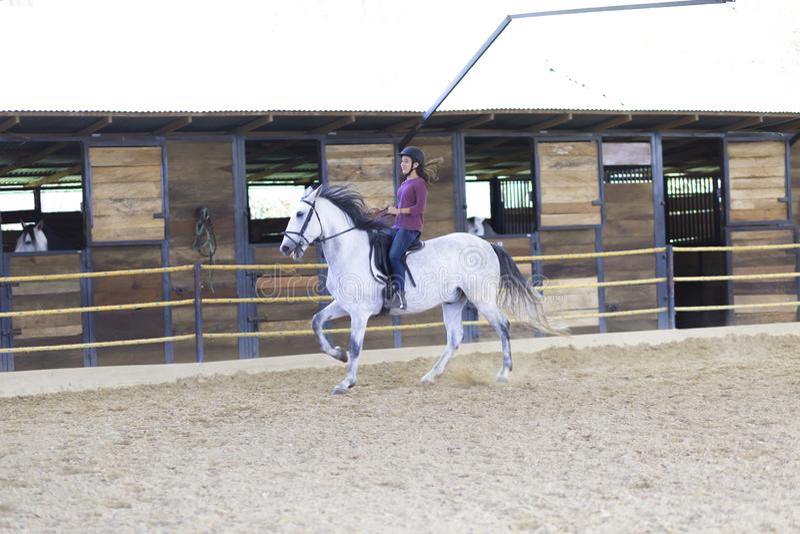 Schöner Jugendlicher, der ein Pferd reitet lizenzfreie stockbilder