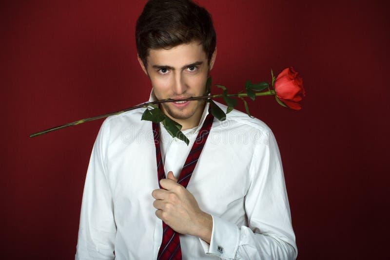 Schöner junger Mann hält eine Rose mit den Zähnen lizenzfreie stockfotografie