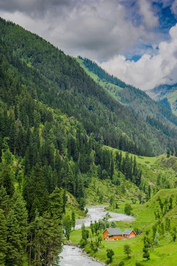 Schöner Kaschmir stockfoto